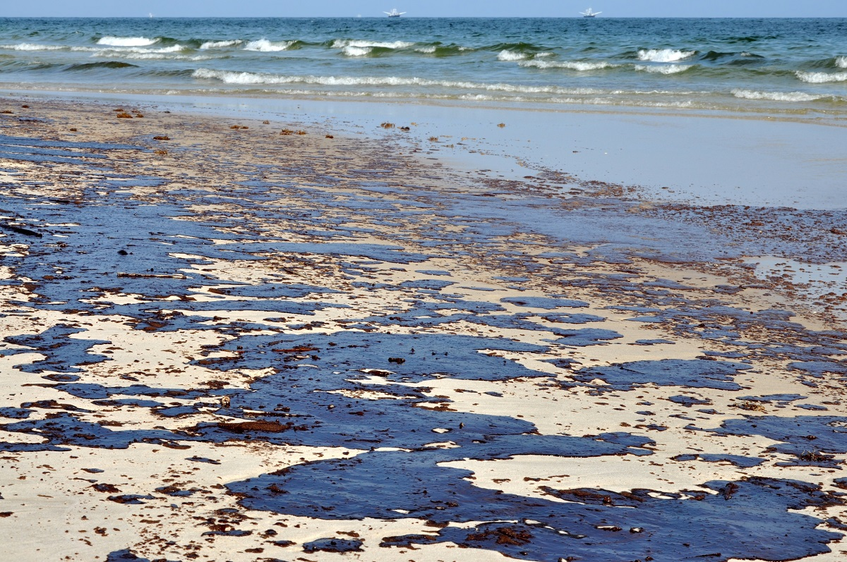 contaminated beach covered with oil